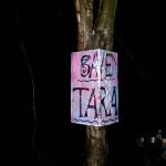 Save Tara
